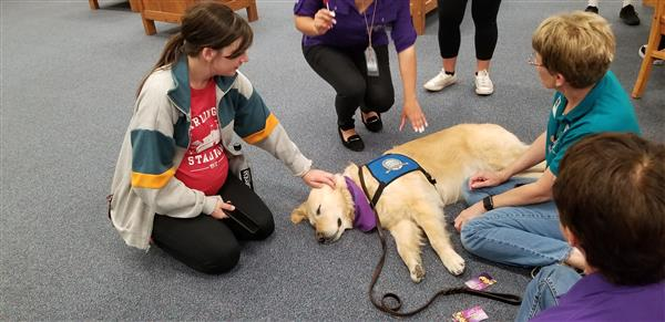 Phoebe the Comfort Dog Visits Diamond Hill-Jarvis HS