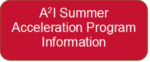 A2I Summer Acceleration Program Information