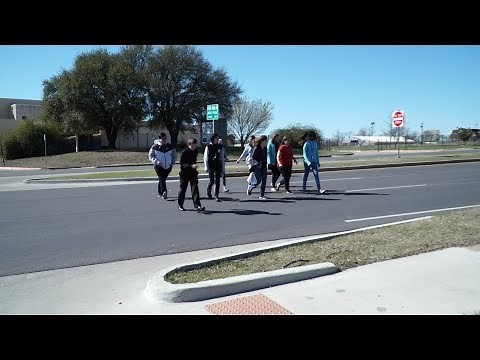 Ms. Checka's Advisory Group and the Crosswalk