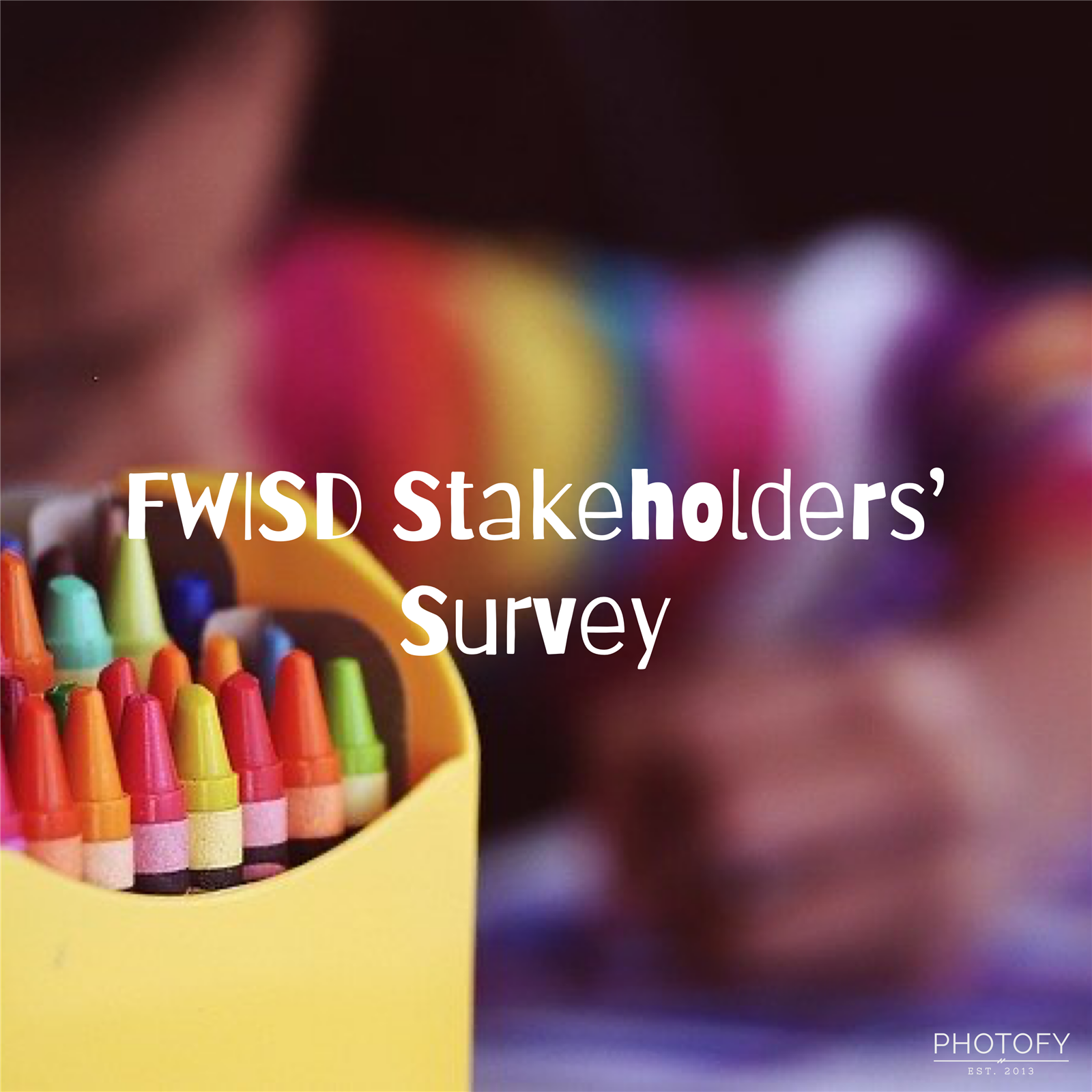 Stakeholders' Survey