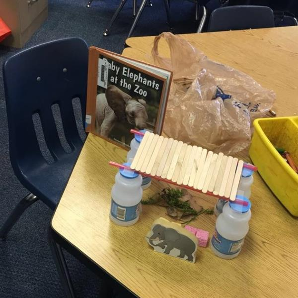 Kindergarten STEM Project - Habitats